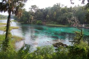 Florida-Rainbow-Springs.jpg